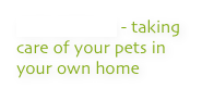 PET SITTING - taking care of your pets in your own home
